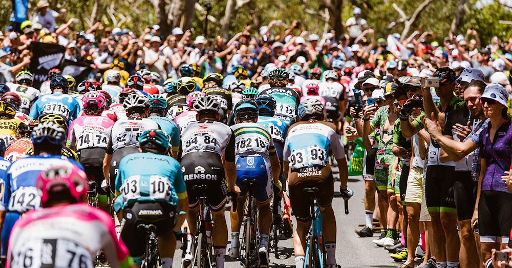 Tour Down Under 2019 Start List Cadence Mag